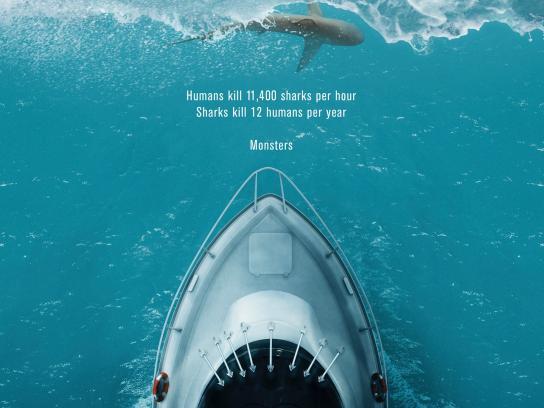Shark finning poster