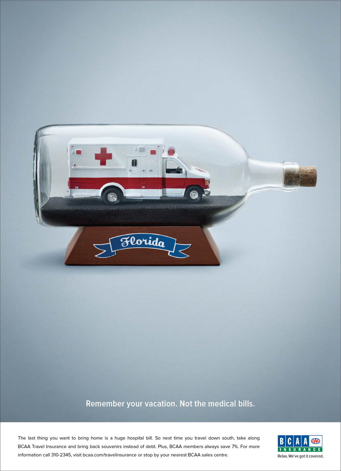 Advertisement Campaign Examples