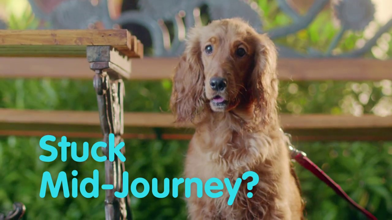 Reliance General Insurance: Dogs in Love