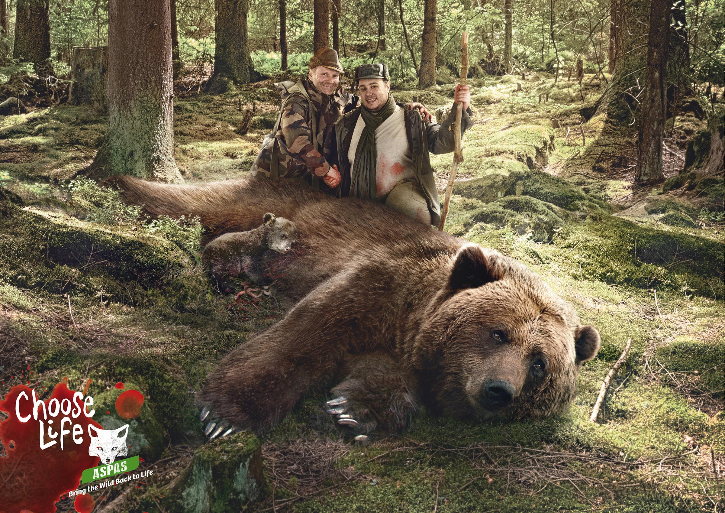 aspas print advert by y u0026r bear ads of the world