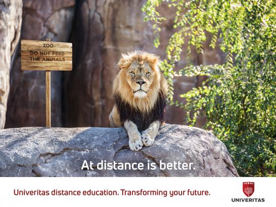 Univeritas Print Ad - Lion