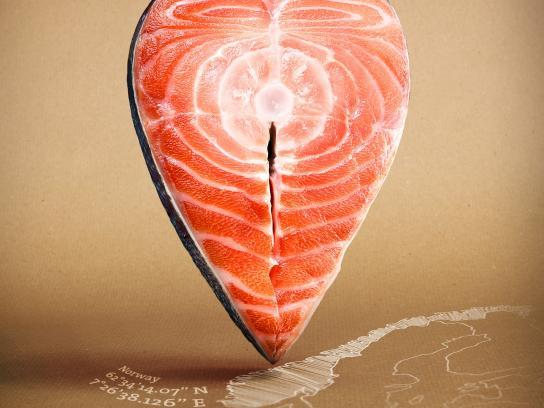 Followfish Print Ad -  Salmon