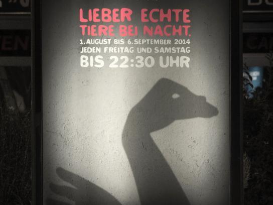 Salzburg Zoo Outdoor Ad -  Ostrich