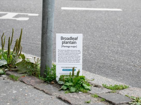 Spejder Sport Outdoor Ad - Botanical plant signs, 4