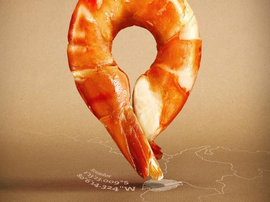 Followfish Print Ad -  Shrimp