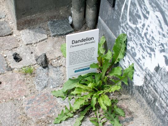 Spejder Sport Outdoor Ad - Botanical plant signs, 1