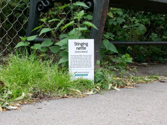 Spejder Sport Outdoor Ad - Botanical plant signs, 2