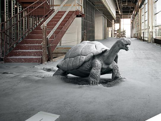 USG Corporation Print Ad - Structural Panels - Tortoise