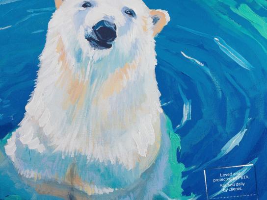 Noah's Ark Creative Print Ad -  Polar bear