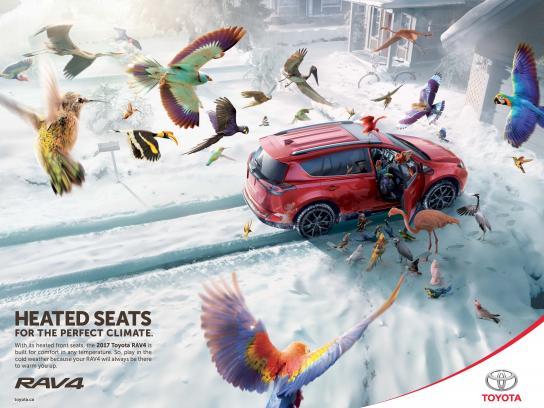 Toyota Print Ad - Birds