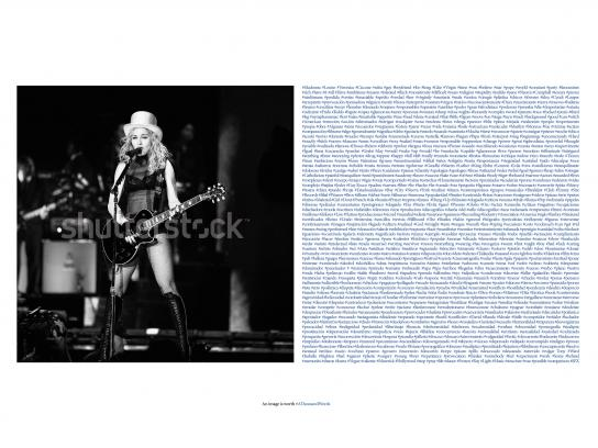 Shutterstock Print Ad - One Thousand Hashtags - Madonna
