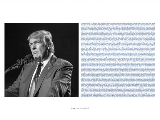 Shutterstock Print Ad - One Thousand Hashtags - Trump
