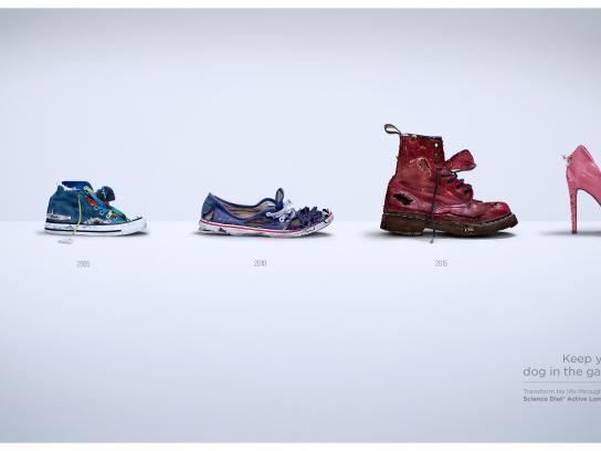Hill's Pet Nutrition Print Ad - Keep Your Dog In The Game - Shoes