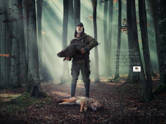 Fundación Banco de Bosques Print Ad - Revolbeaver