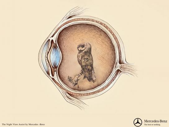 Mercedes Print Ad - Owl