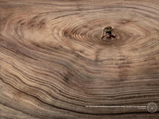Regional Environmental Awareness Cameron Highlands Print Ad - Boy