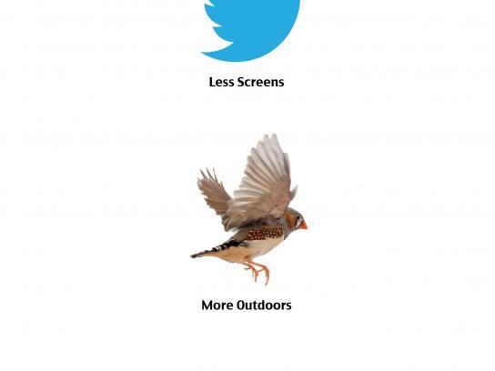 Rikushet Print Ad -  Birds