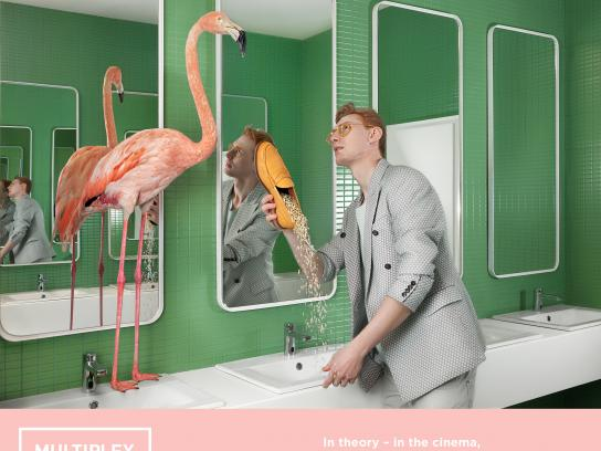 Multiplex Cinema Digital Ad - Flamingo