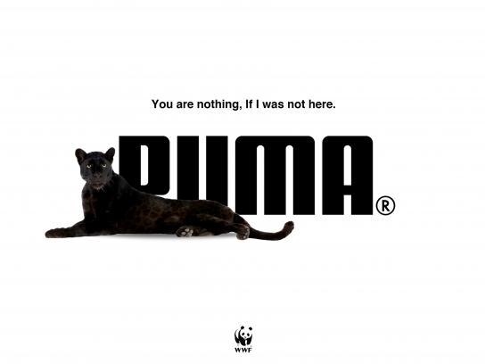 WWF Outdoor Ad - Puma