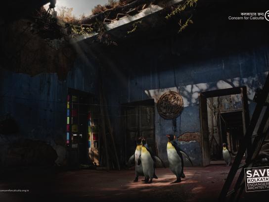 Concern for Kolkata Outdoor Ad - Penguin