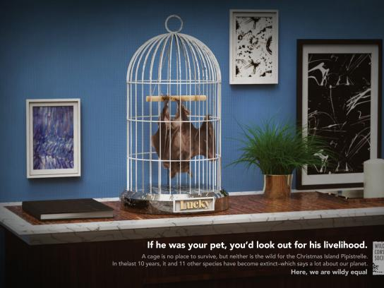 Wildlife Conservation Society Print Ad - Lucky