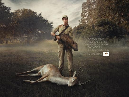 Fundación Banco de Bosques Print Ad - Pigstol