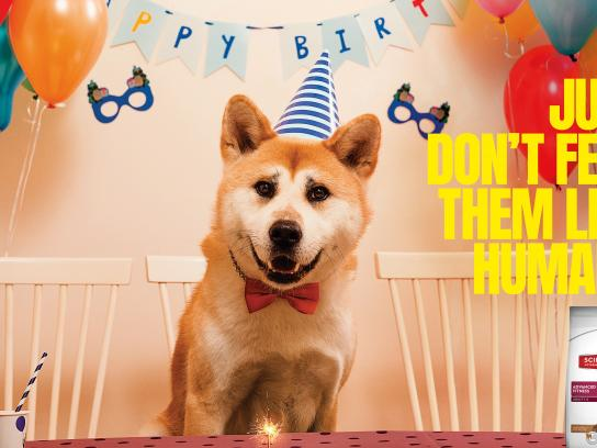 Hill's Print Ad - Birthday