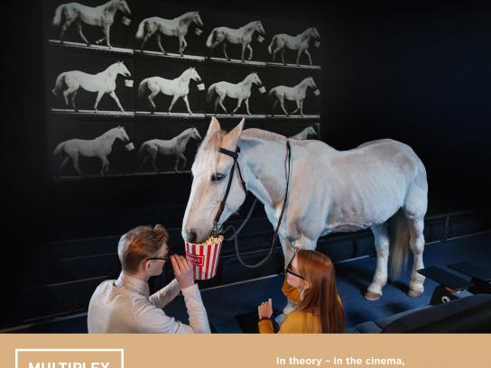 Multiplex Cinema Digital Ad - Horse