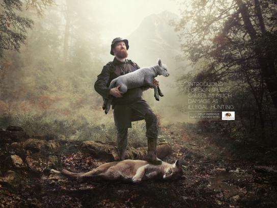 Fundación Banco de Bosques Print Ad - Masheep Gun