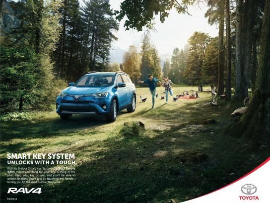 Toyota Print Ad - Skunks