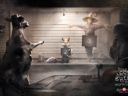 Juice Purina Print Ad -  Cow