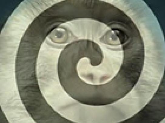 Gainomax Film Ad -  Hypnotic monkey