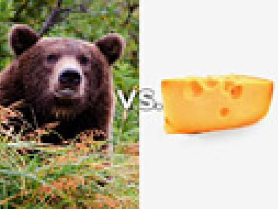 Seagram's Film Ad -  Rivalries Bear