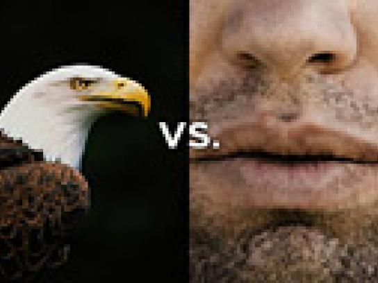 Seagram's Film Ad -  Rivalries Eagle
