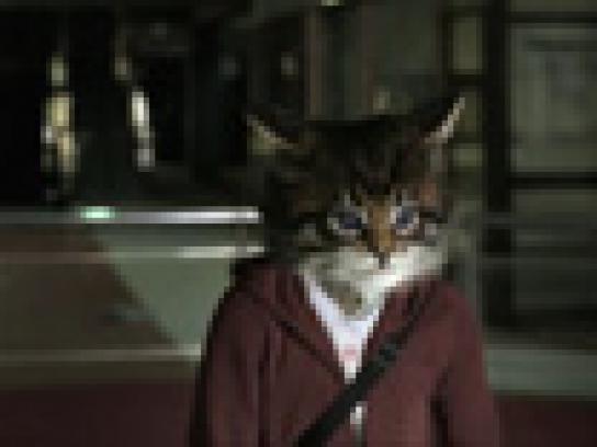 Toyota Film Ad -  Ninja Kitty
