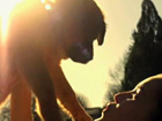 VTSF Film Ad -  Puppy
