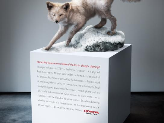 Honda Print Ad -  Arctic Fox