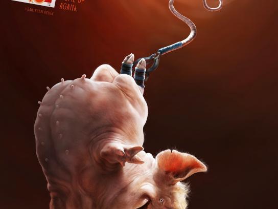 Talidat Print Ad -  Pig