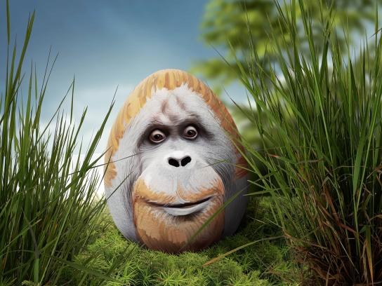Zoo Cologne Print Ad -  Ape