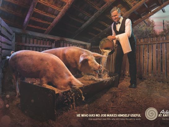 Active At Any Age Print Ad -  Pigs