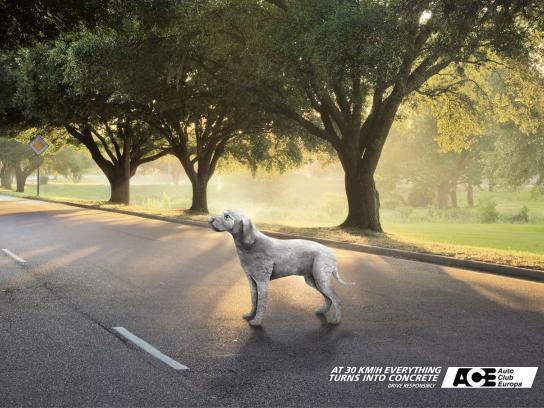Auto Club Europa Print Ad -  Dog