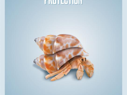 Rosave A Print Ad - Dual Protection