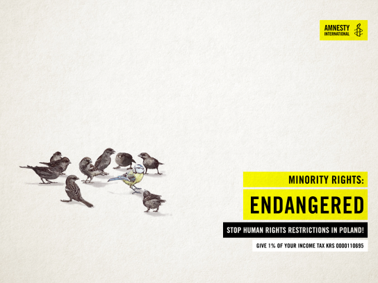 Amnesty International Print Ad - Minority Rights