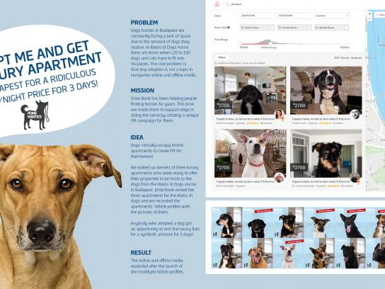 Erste Bank Digital Ad - AirBNB for dog lovers