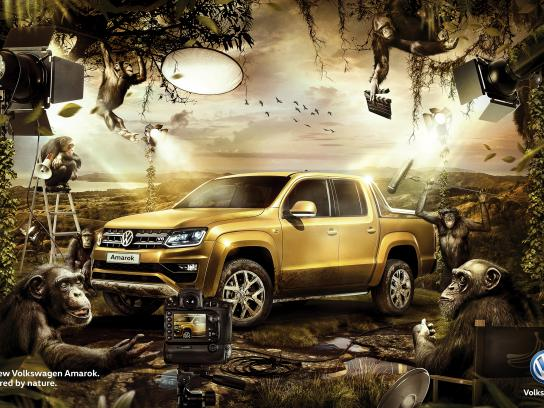 Volkswagen Print Ad - Captured by Nature - Monkeys
