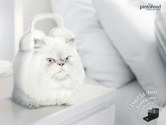 Pintofeed Print Ad - Animal Clock - Cat