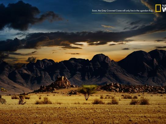 National Geographic Print Ad -  Flag, 3