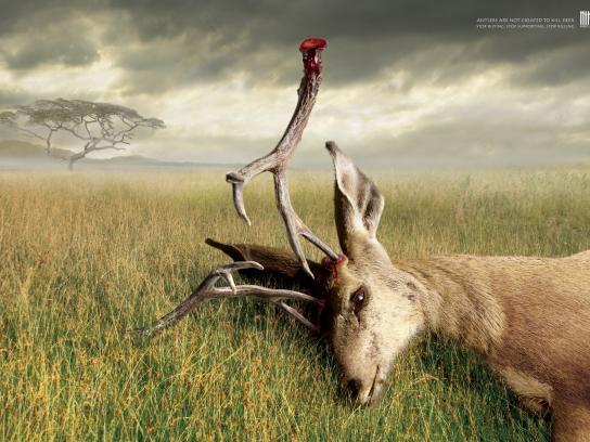 Wildlife Friend Foundation Thailand Print Ad -  Antlers