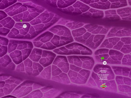 Hortifruti Print Ad - HortiMaps - Cabbage, 2