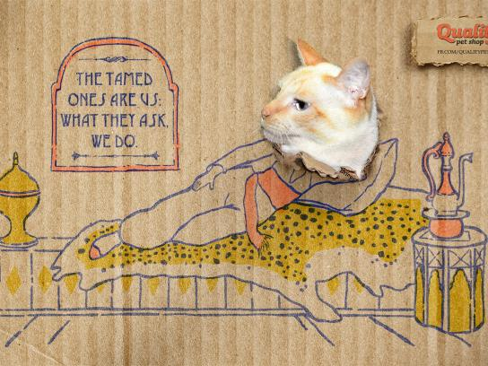 Quality Pet Shop Print Ad -  Majestic Cats, 1